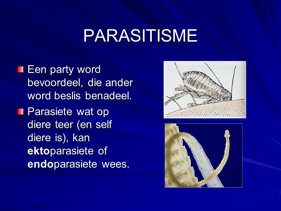 PARASITISME Een party word bevoordeel, die ander word beslis benadeel.
