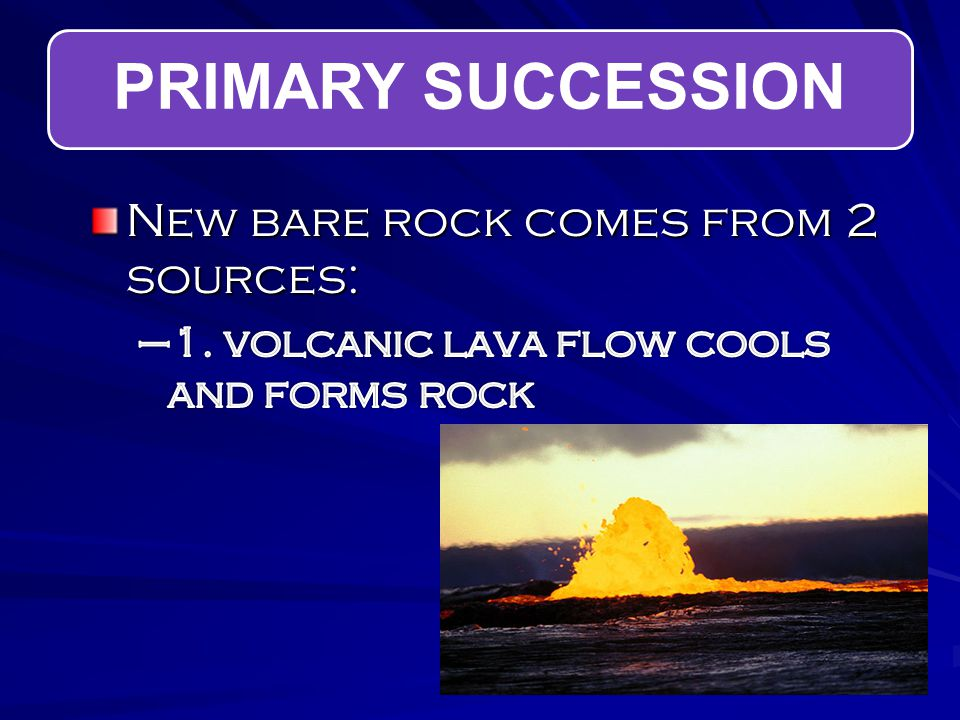 PRIMARY SUCCESSION New bare rock comes from 2 sources:
