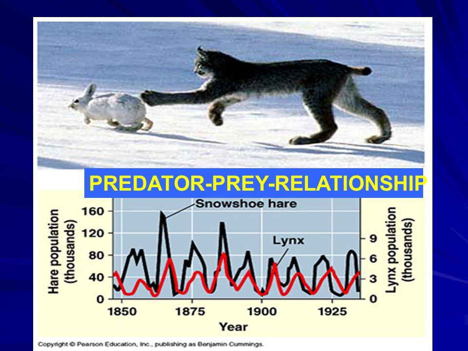 PREDATOR-PREY-RELATIONSHIP