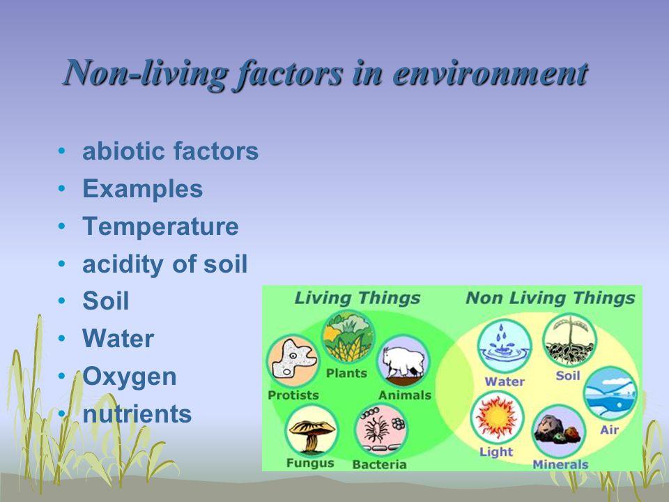 Non-living factors in environment