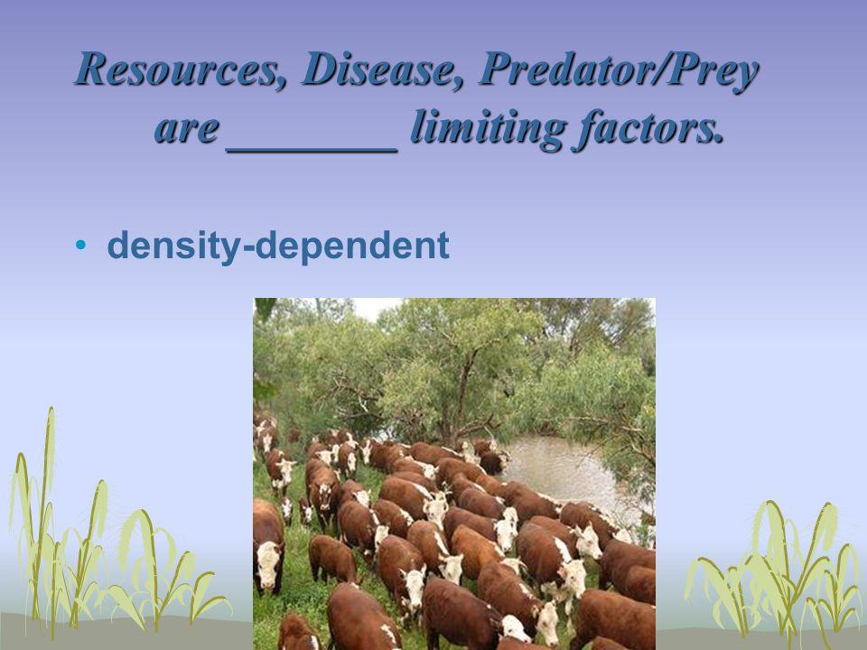 Resources, Disease, Predator/Prey are _______ limiting factors.