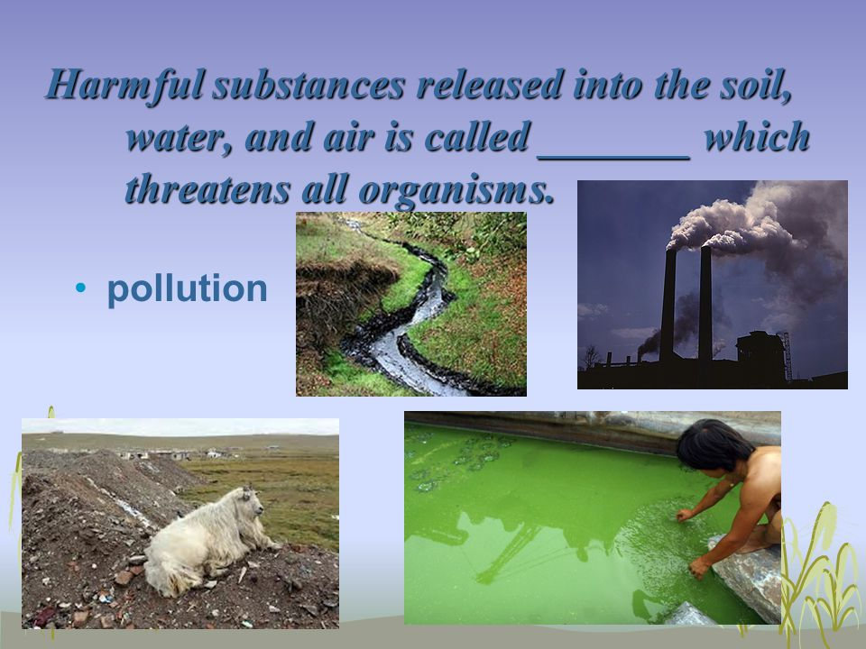 Eoc practice questions 5 ppt video online download for What substances are in soil