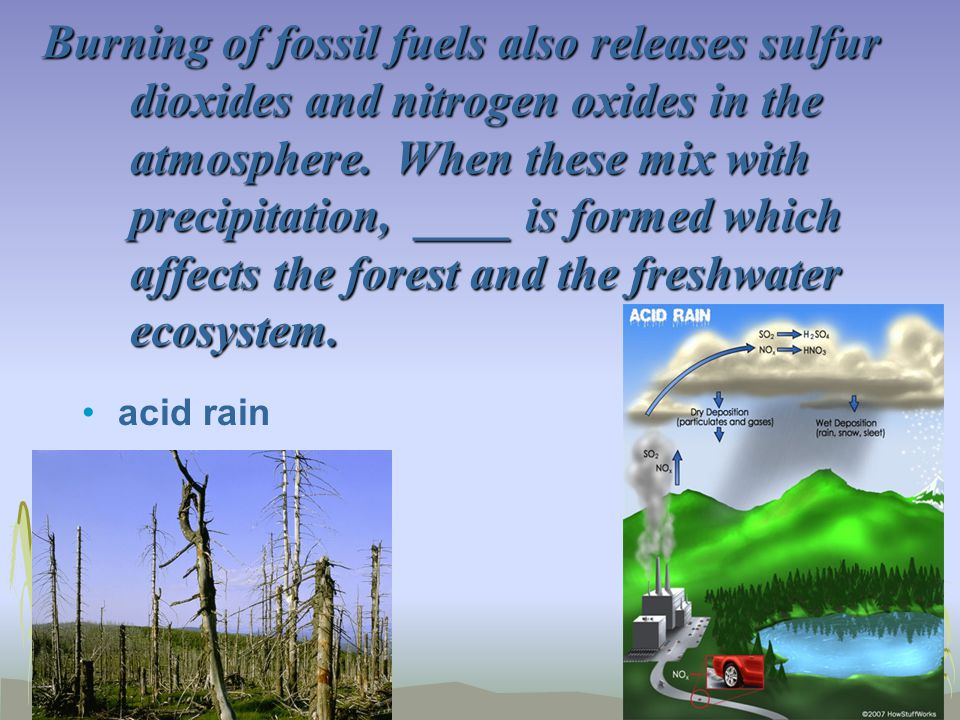 Burning of fossil fuels also releases sulfur dioxides and nitrogen oxides in the atmosphere. When these mix with precipitation, ____ is formed which affects the forest and the freshwater ecosystem.