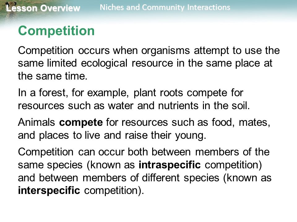 Competition Competition occurs when organisms attempt to use the same limited ecological resource in the same place at the same time.