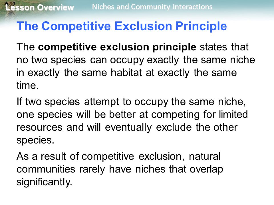 The Competitive Exclusion Principle
