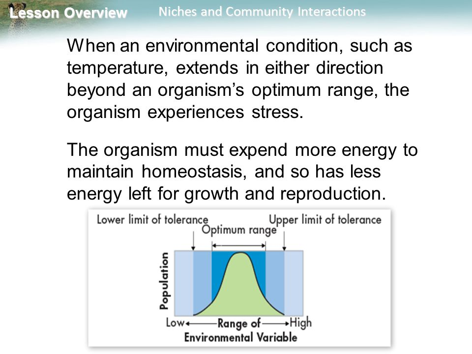 When an environmental condition, such as temperature, extends in either direction beyond an organism's optimum range, the organism experiences stress.