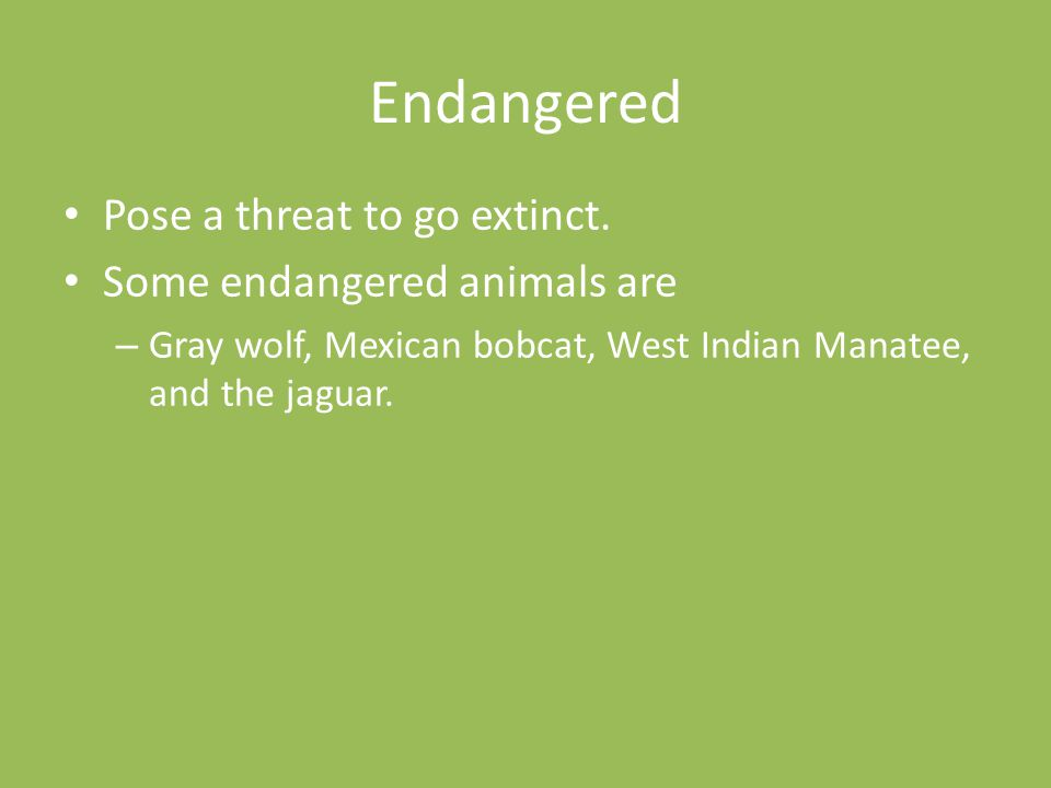 Endangered Pose a threat to go extinct. Some endangered animals are
