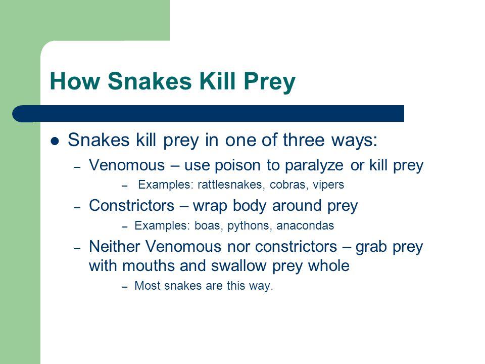 How Snakes Kill Prey Snakes kill prey in one of three ways: