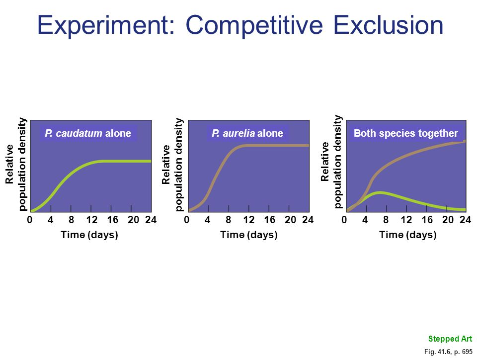 Experiment: Competitive Exclusion
