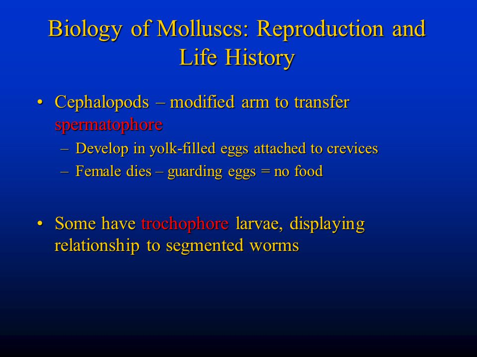 Biology of Molluscs: Reproduction and Life History