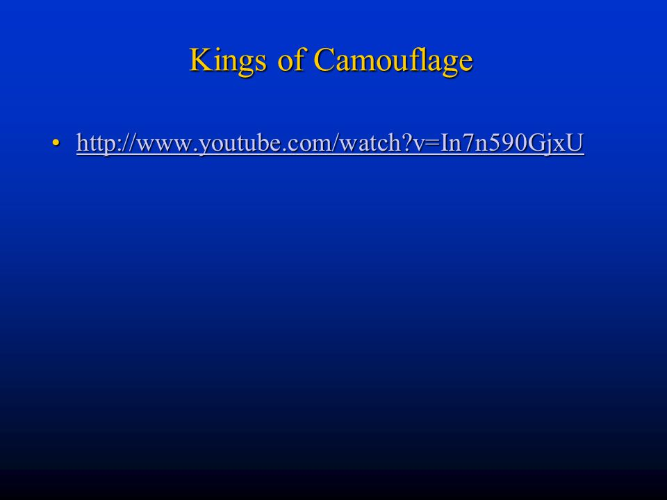 Kings of Camouflage http://www.youtube.com/watch v=In7n590GjxU