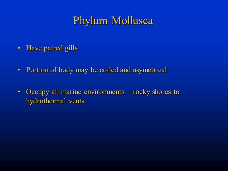 Phylum Mollusca Have paired gills