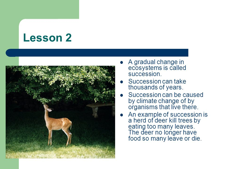 Lesson 2 A gradual change in ecosystems is called succession.