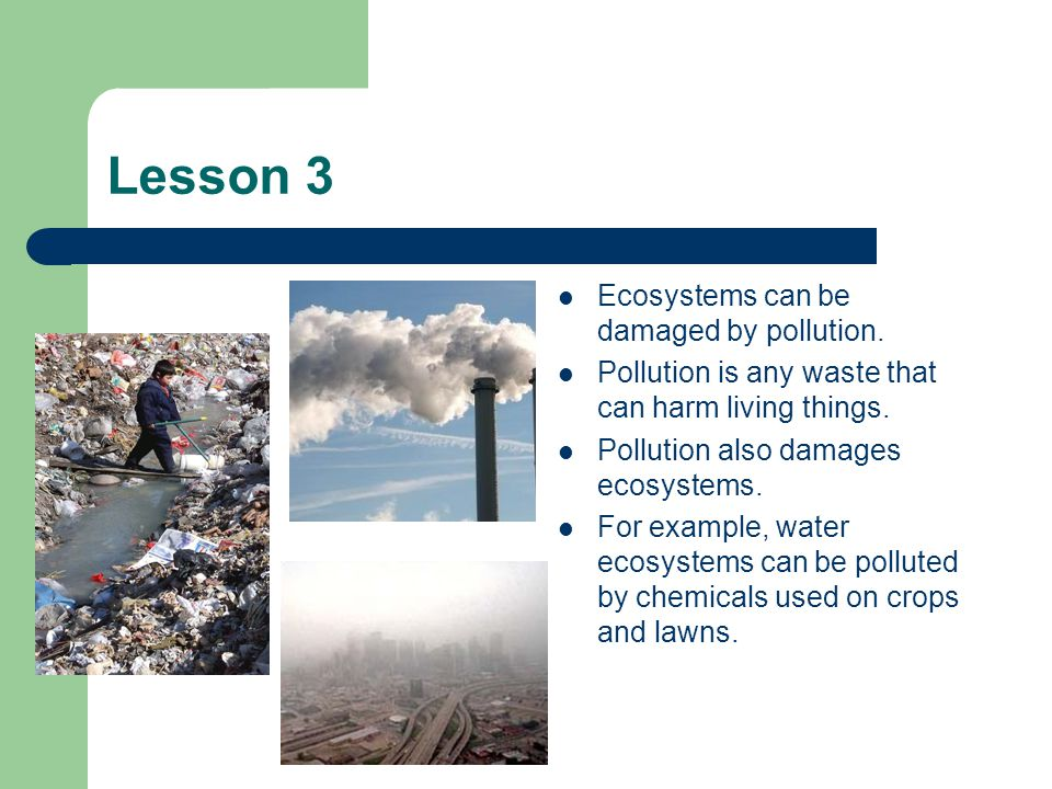 Lesson 3 Ecosystems can be damaged by pollution.
