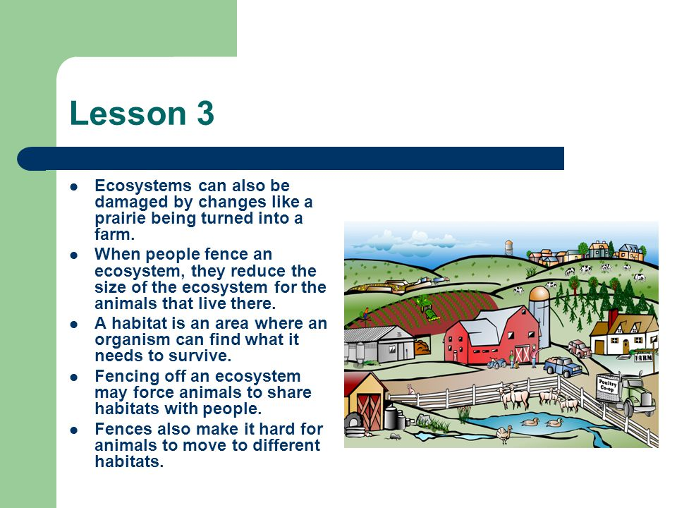 Lesson 3 Ecosystems can also be damaged by changes like a prairie being turned into a farm.