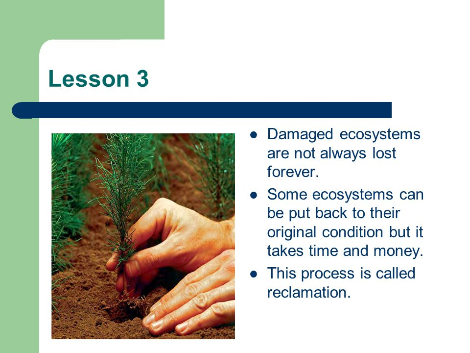 Lesson 3 Damaged ecosystems are not always lost forever.