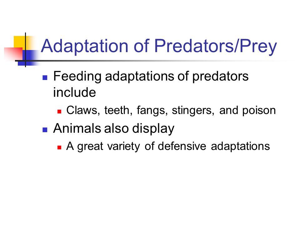 Adaptation of Predators/Prey