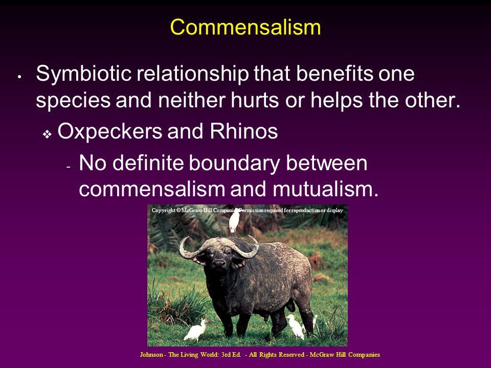 No definite boundary between commensalism and mutualism.