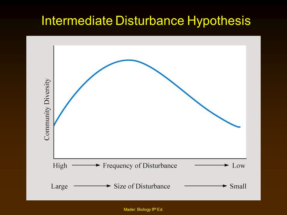 Intermediate Disturbance Hypothesis