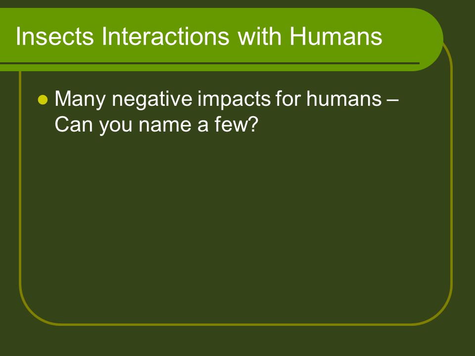 Insects Interactions with Humans