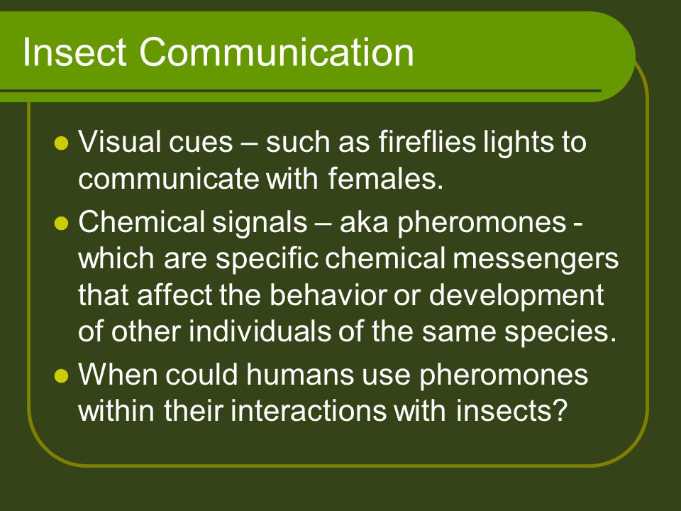 Insect Communication Visual cues – such as fireflies lights to communicate with females.