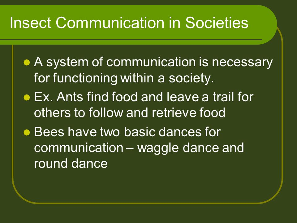 Insect Communication in Societies