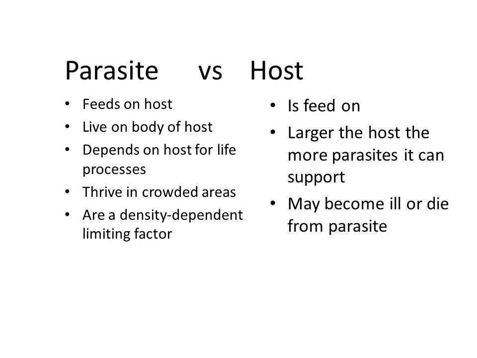 Parasite vs Host Is feed on