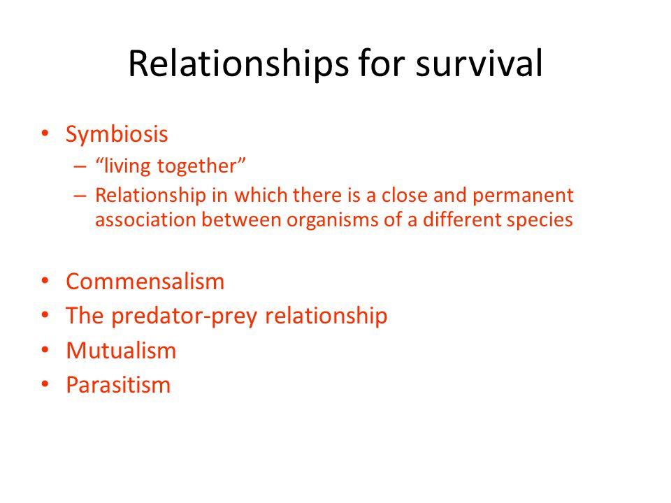 Relationships for survival