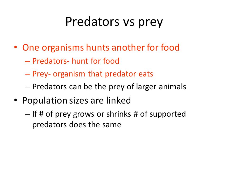 Predators vs prey One organisms hunts another for food