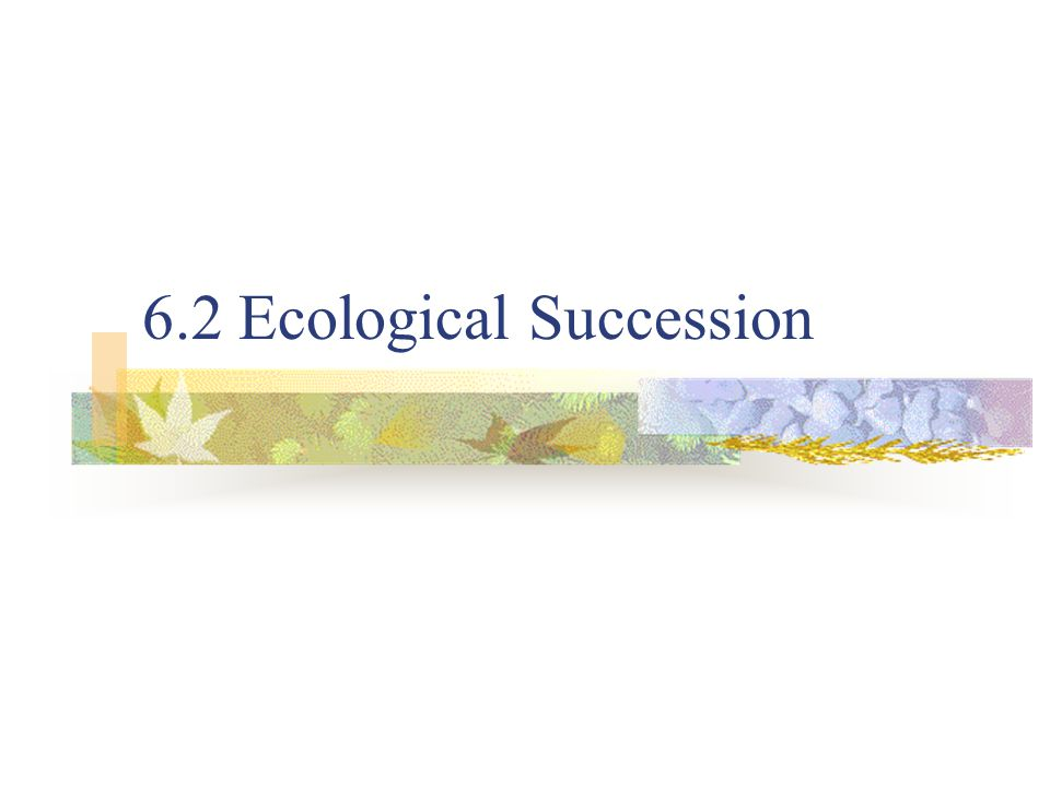 6.2 Ecological Succession