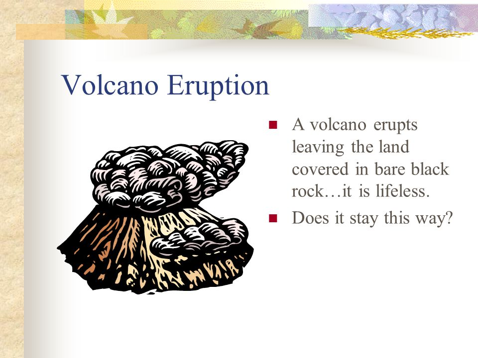 Volcano Eruption A volcano erupts leaving the land covered in bare black rock…it is lifeless.