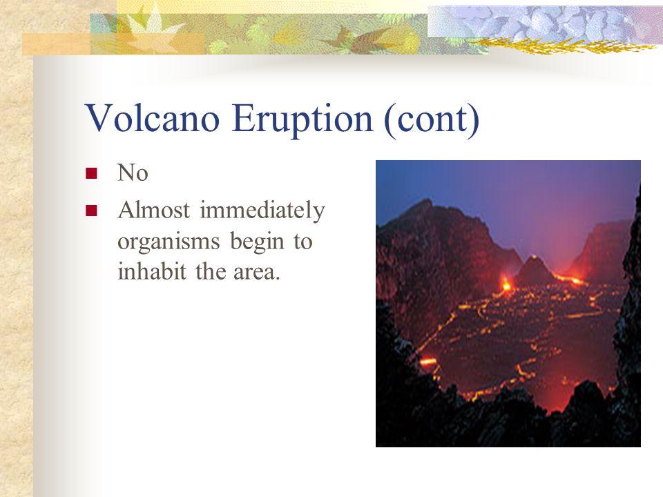 Volcano Eruption (cont)