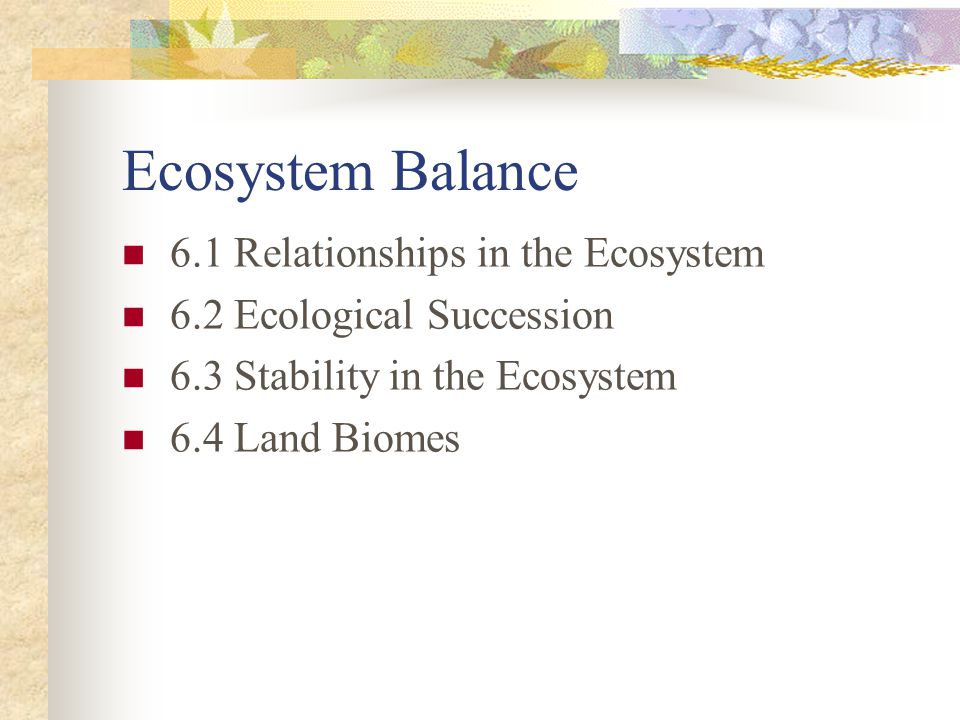Ecosystem Balance 6.1 Relationships in the Ecosystem
