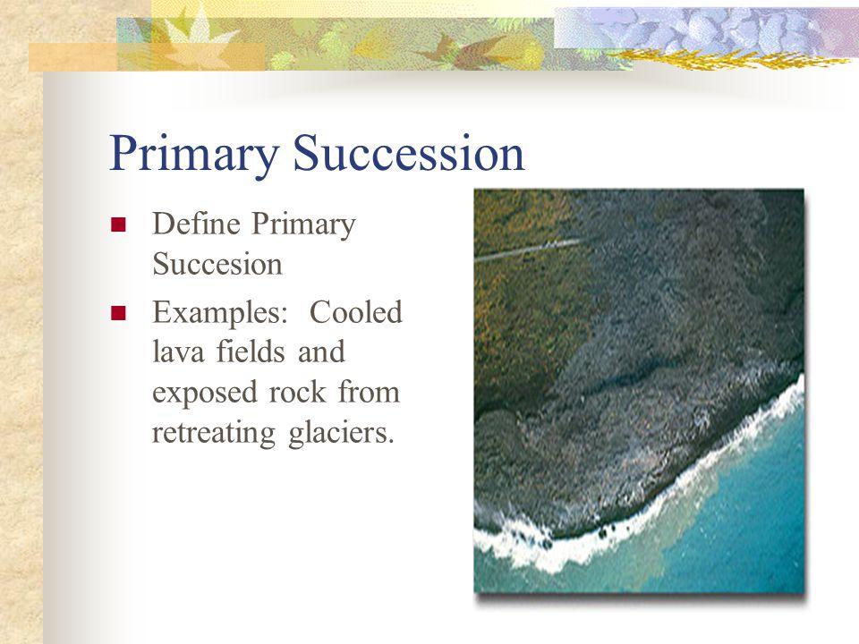Primary Succession Define Primary Succesion