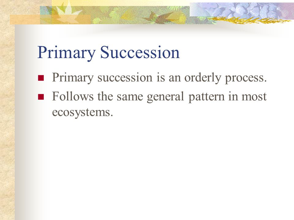 Primary Succession Primary succession is an orderly process.