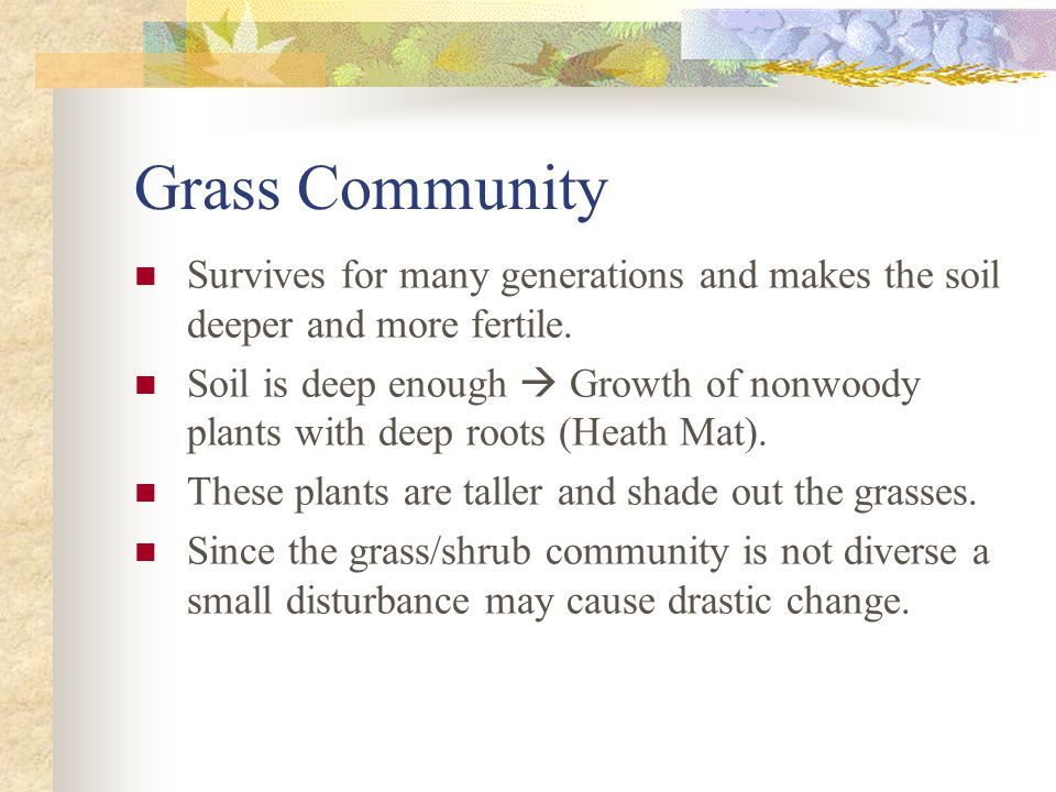 Grass Community Survives for many generations and makes the soil deeper and more fertile.