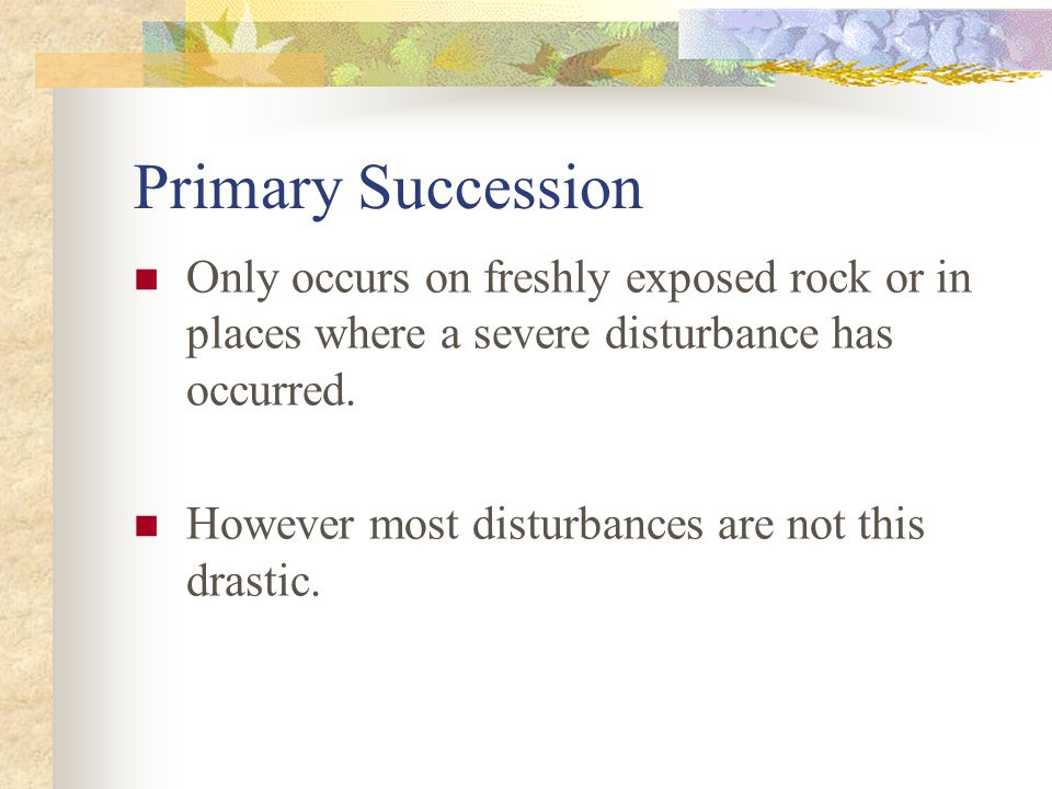 Primary Succession Only occurs on freshly exposed rock or in places where a severe disturbance has occurred.