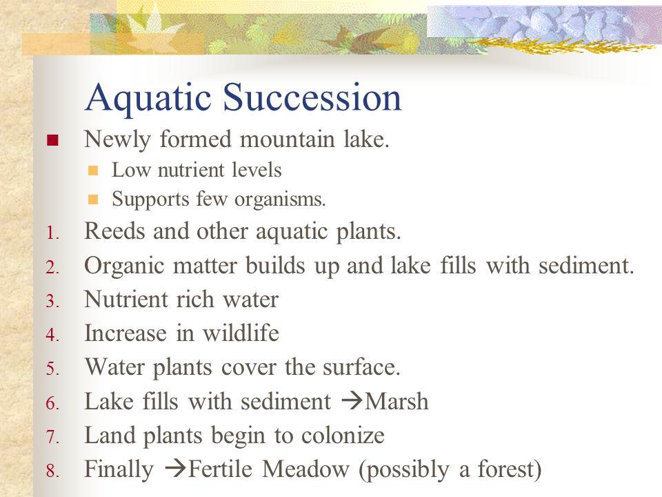 Aquatic Succession Newly formed mountain lake.