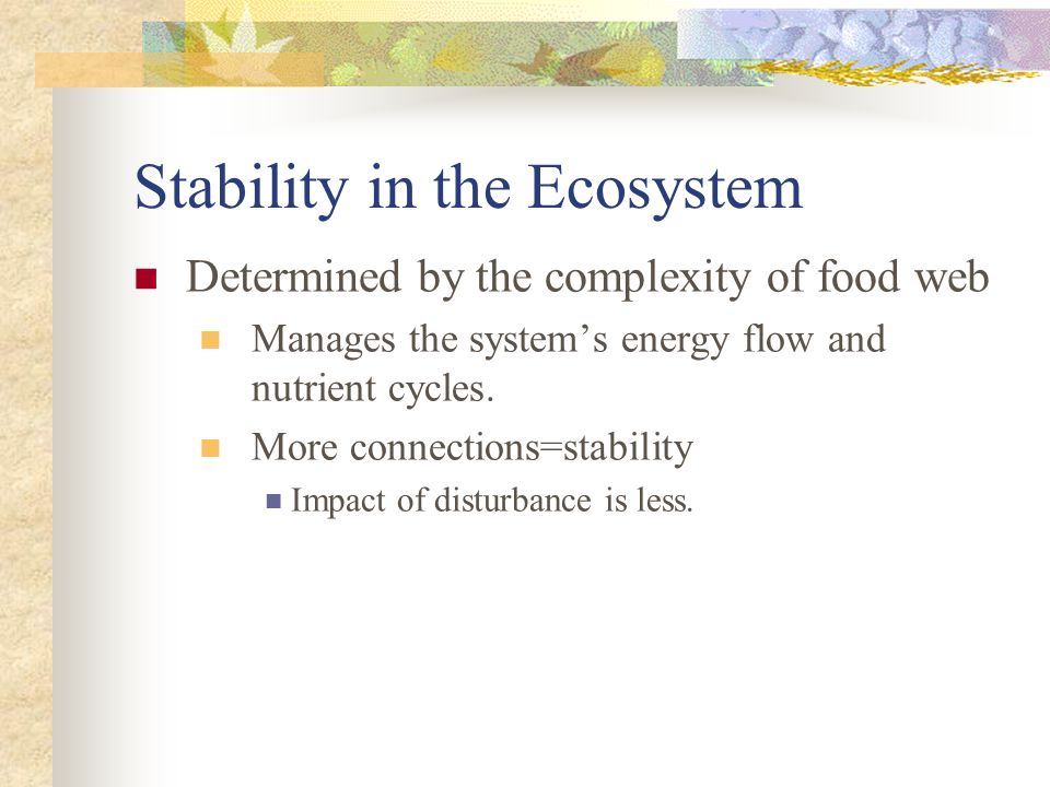 Stability in the Ecosystem