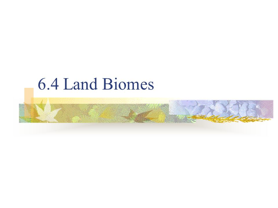 6.4 Land Biomes