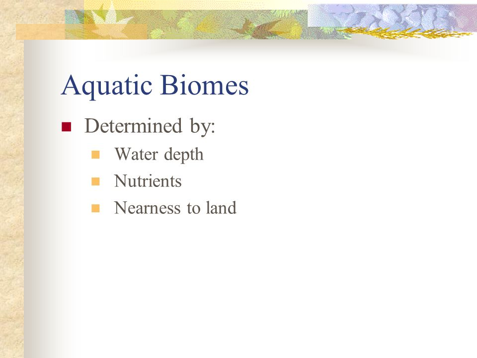 Aquatic Biomes Determined by: Water depth Nutrients Nearness to land