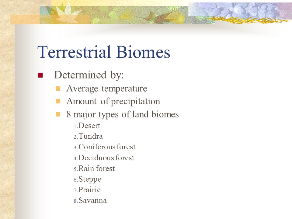 Terrestrial Biomes Determined by: Average temperature