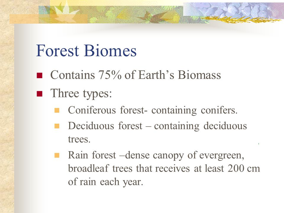 Forest Biomes Contains 75% of Earth's Biomass Three types:
