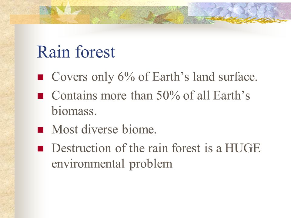Rain forest Covers only 6% of Earth's land surface.