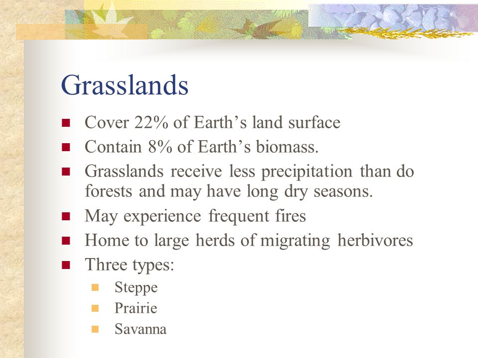 Grasslands Cover 22% of Earth's land surface