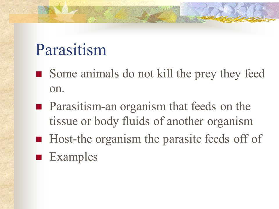 Parasitism Some animals do not kill the prey they feed on.