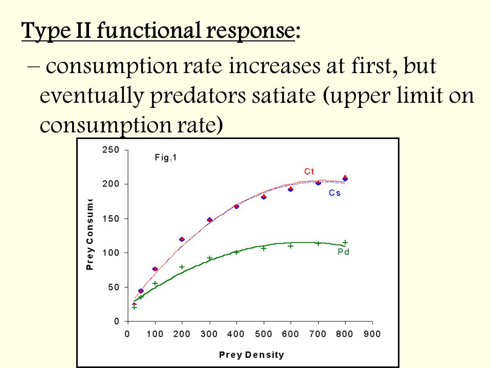 Type II functional response: