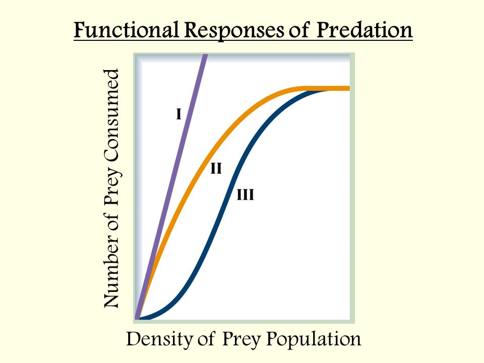 Functional Responses of Predation