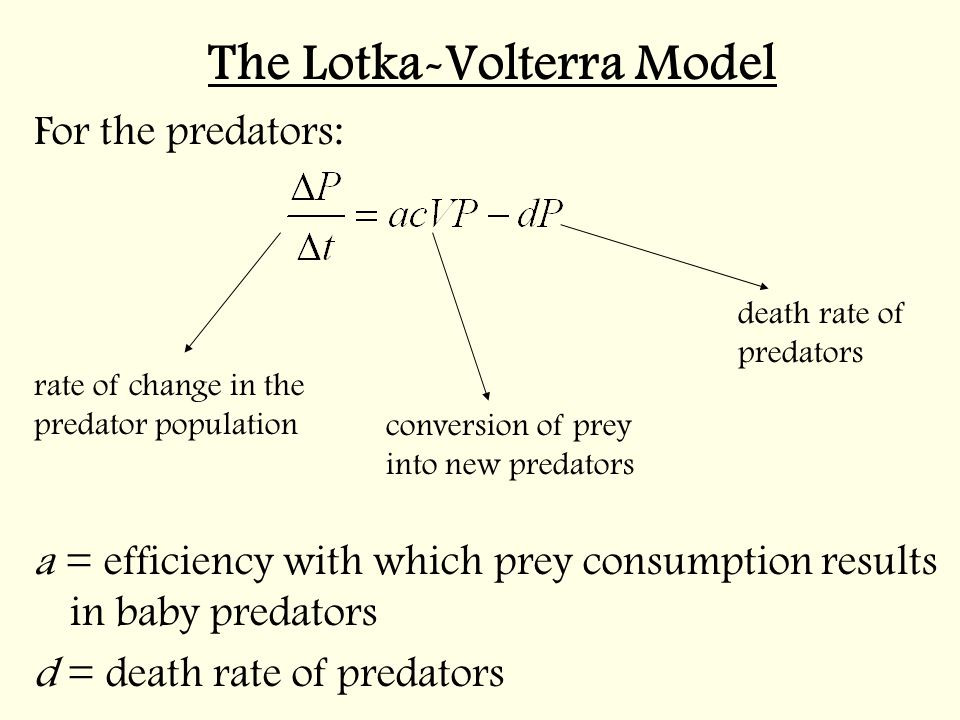 lotka volterra predetor prey model The lotka-volterra predator-prey model and harvesting strategies lixian chen california state university san marcos abstract: in this talk, i will first briefly describe the basics of the classical lotka-volterra.