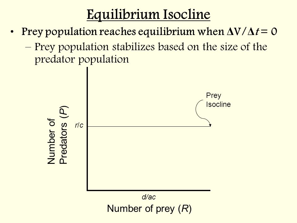 Equilibrium Isocline Prey population reaches equilibrium when ΔV/Δt = 0. Prey population stabilizes based on the size of the predator population.